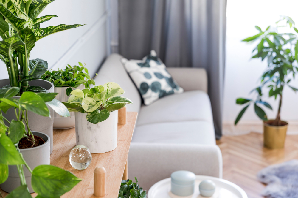 Apartment Trends We'll See in 2021
